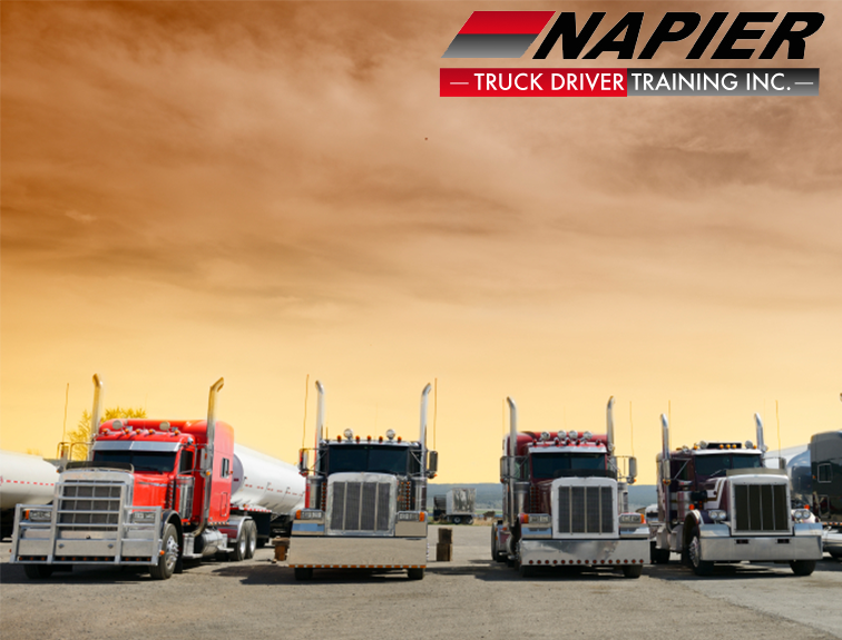 Pictured are a group of trucks in a row